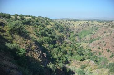 The Golan Plateau